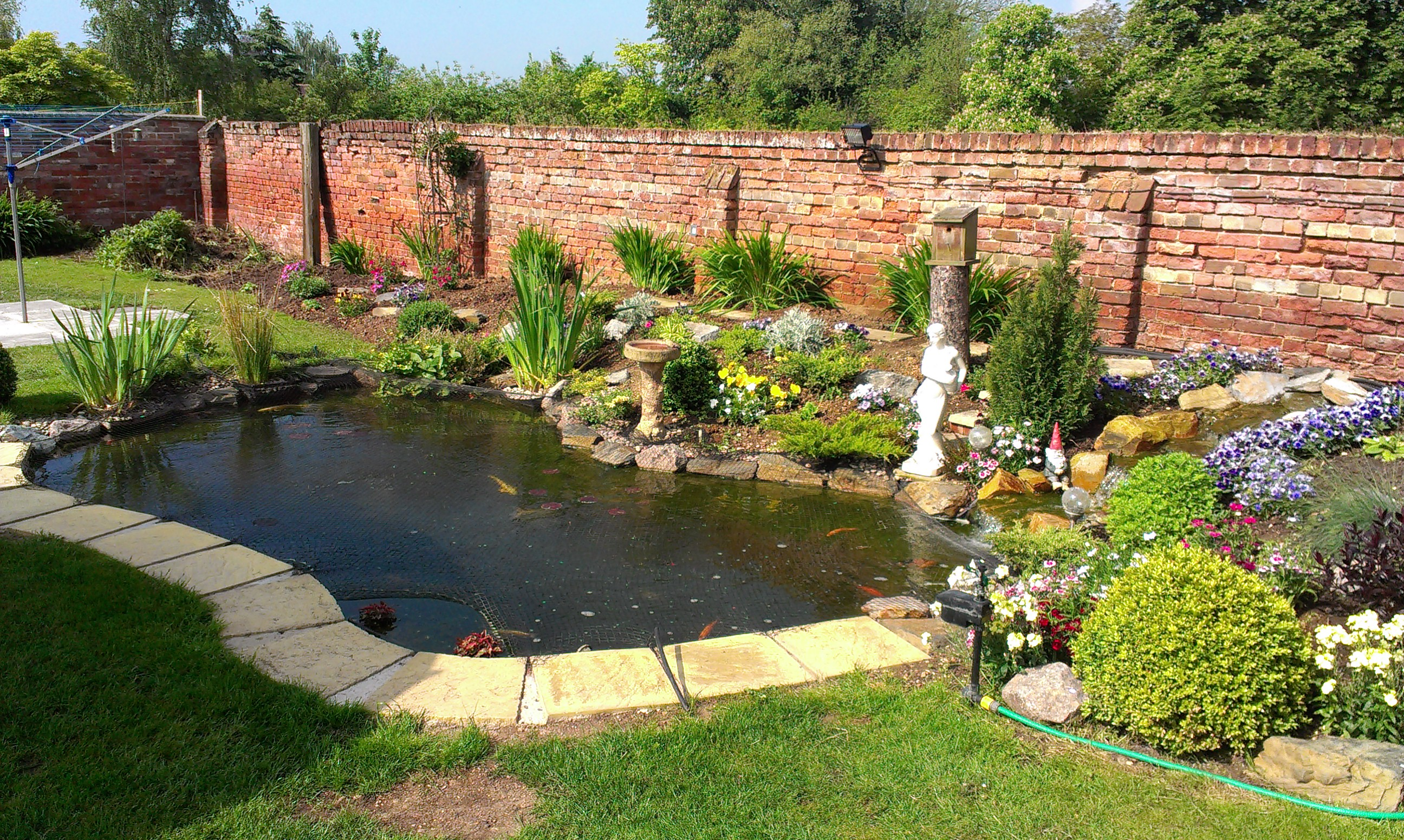 Diy Pond Your Ponds