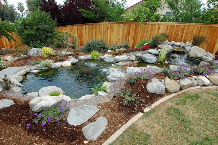Koi pond beginners for Diy patio pond