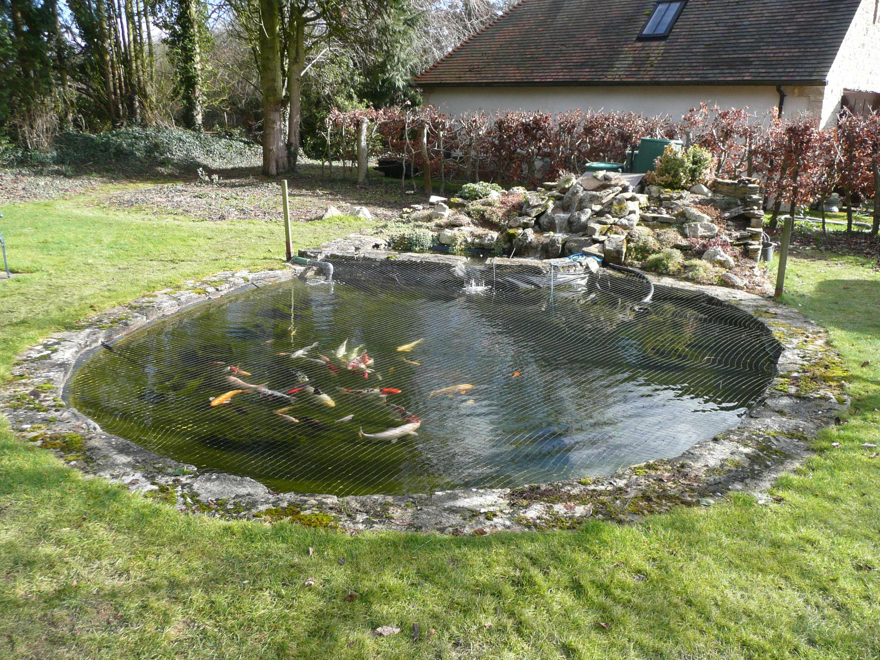 Your ponds for Homemade pond filter